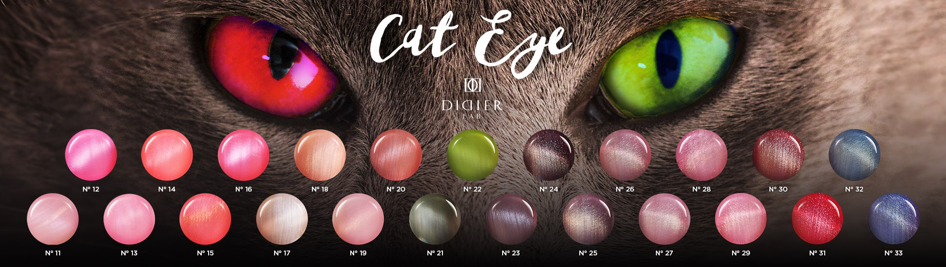 cat-eye-1